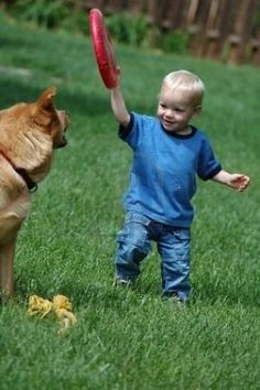 A good article about dogs and kids