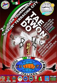 1000+ images about taekwondo posters on Pinterest ...