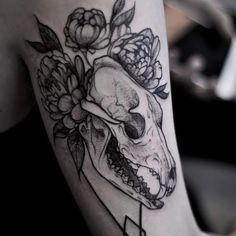 Animal skull tattoo by Jeanne Saar #JeanneSaar #blackwork #animalskull #skull
