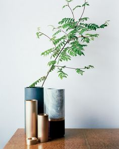 Michael Verheydens vessels in cement (with branch), bronze, marble and wood