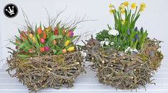 DIY - Frühlingsdeko / Osterdeko selber machen I XXL-Nest aus Zweigen I D...