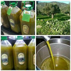 Egebay 5lt Yeşil İlk Hasat Zeytinyağı 110,00 TL ve ücretsiz kargo ile n11.com'da! Diğer Zeytin Yağı fiyatı Süpermarket kategorisinde.