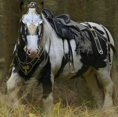 Draught Horse clipart medieval horse - pin to your gallery. Explore what was found for the draught horse clipart medieval horse Most Beautiful Horses, All The Pretty Horses, Animals Beautiful, Cute Animals, Horse Armor, Horse Gear, Horse Tack, Horse Stalls, Horse Barns