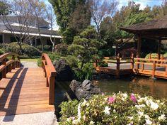 Edogawa Gardens at Gosford Regional Gallery