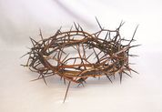 Crown of Thorns 13inch or 24 inch ZZ2780