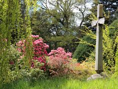 Find a garden to visit from one of gardens that open for the National Garden Scheme across England and Wales. Use our find a garden search. Private Garden, Exeter, Devon, Charity, England, Gardens, Outdoor Structures, Places, Lugares