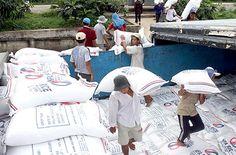 Hậu phá giá đồng NDT: Gạo Việt xuất khẩu bị ép giá | TIN TỨC NÔNG NGHIỆP