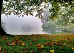 Foggy morning at the Duck Pond at Virginia Tech. http://vto.vt.edu (Photo by Peter Means) #virginiatech #hokies