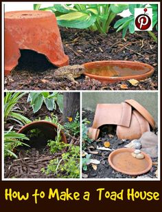 How to Build a Toad House Gardening Toad house, Landscaping garden toad house - House & Garden Toad House, Frog House, Frog Habitat, Container Water Gardens, Landscaping Around House, Backyard Landscaping, Diy Water Feature, Building A Container Home, Backyard For Kids