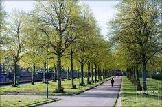 img_2238 erasmuspark