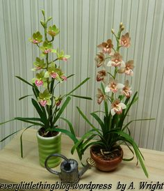 Miniature Cymbidium Orchids, kits by Pascale Garnier. Painted by A. Wright