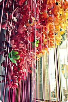 anthropologies window display one season. made out of plastic bottles.