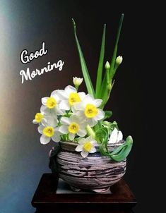 Good Morning Flowers Quotes, Good Morning Beautiful Pictures, Good Morning Image Quotes, Good Morning Picture, Good Night Image, Morning Pictures, Morning Quotes, Good Morning Letter, Good Morning Coffee