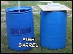 Recirculating Aquaculture System Made from Barrels (Barrelponics) - YouTube