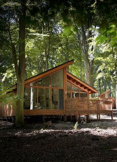 The Forest Works :: Corporate events & team building days