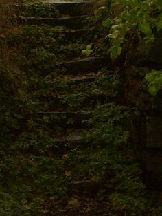 Old, forgotten staircase, Nynäs slott, Sweden