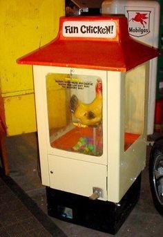 egg laying chicken machine