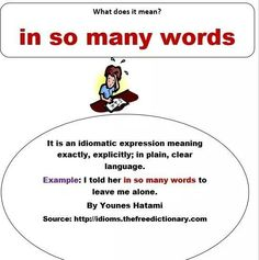 In so many words idiom