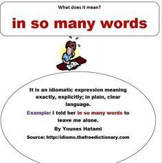 In so many words idiom