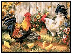 Nº3 - Galos - Aves - Não Disco Externo