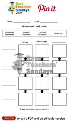 Food chains worksheet. Go to http://www.saveteacherssundays.com/science/year-4/373/lesson-1-food-chains/ to download this Food chains worksheet. #SaveTeachersSundaysUK