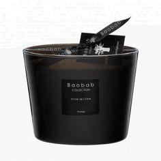 Bougie Baobab