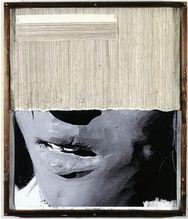 Rosemarie Trockel, The Postcard