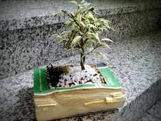 Creative planters made of recycled old books