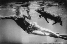 """"""" Las fotografías no tienen contenido narrativo solo describen luces y sombras, al autor y el espectador le dan el significado""""  Garry Winogrand, 1928 – 1984, fotógrafo estadounidense, pionero del movimiento conocido como """"Street Photography"""""""