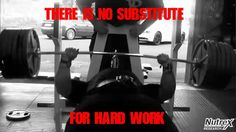 there is no substitute for hard work zack khan nutrex