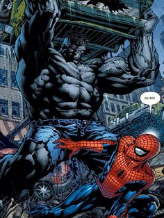 Hulk vs Spider-man By David Finch.. °°