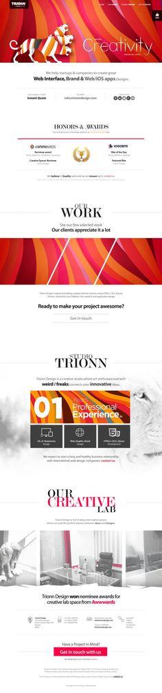 Trionn Design - A Design Studio - Webdesign inspiration www.niceoneilike.com