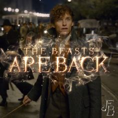 The Beasts are back on November The Crimes of Grindelwald . - The Beasts are back on November The Crimes of Grindelwald is now playing! Always Harry Potter, Harry Potter Anime, Harry Potter Film, Harry Potter Universal, Harry Potter Fandom, Harry Potter Memes, Fantastic Beasts Movie, Fantastic Beasts And Where, Eddie Redmayne Fantastic Beasts