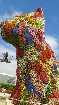 Perro delante del Guggenheim, Bilbao