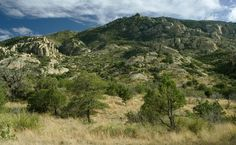Northeast slope of Mica Mountain from Italian Spring Trail, Rincon Mountains, AZ