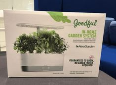 No Space Is Too Dark For These Smart Counter Top Gardens