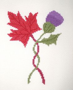 Thistle & Maple Leaf Cross Stitch Pattern by BonnieThistleDesigns, $7.00