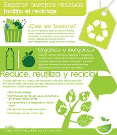 Infografía: Separar nuestros residuos facilita el reciclaje -  Infografía que nos muestra que es la basura, la diferencia entre desechos orgánicos e inorgánicos y fomenta el uso de la regla de las tres R, reducir, reutilizar y reciclar. Infografía de Empresas Verdes.
