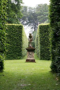hedge maze!