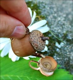Make an entire acorn tea set!