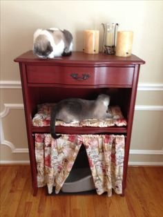 My new cat condo. This is a dresser repurposed into a cat condo, litter box disguise. This was an old French Provincial chest of drawers, all drawers removed except the top one. Only the middle shelf was saved and a cat bed put on it, completed the look with tension rod with cute curtain to hide the litter box. Coco and Jax, Snowshoe cats approve.