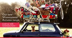 Border terrier + Mini Cooper + Boden = YES. Boden Uk, On The Road Again, Border Terrier, Little Brown, Brown Dog, Mini S, Cute Funny Animals, Online Shopping Clothes, Make You Smile