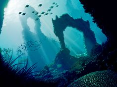 Underwater - colour version by Lepidact on DeviantArt