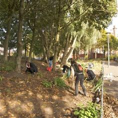 What Is Guerrilla Gardening: Information On Creating Guerrilla Gardens