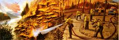 wildfire illustration - Google-søgning
