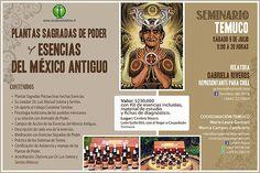 El próximo mes de julio en la ciudad de Temuco, Sendero del Alma presentará el Seminario Plantas Sagradas de Poder y Esencias del México Antiguo, para compartir el manejo de las conocidas Esencias Chamánicas.