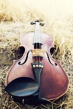 Fiddle, Violin, Photography, Music, Country, Rustic, Beauty, Bluegrass, Folk Meets Elegance.
