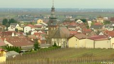 Donald Trump's ancestors came from Kallstadt, a small wine producing  town in southwest Germany (Rhineland-Palatinate).