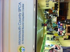 Visited this wonderful place in The Freehold Mall in NJ. The mall owner pushed out the puppy selling shop and gave the space to the SPCA for Adoptions. It's such a great idea. Instead of buying puppies form mills, people can adopt great dogs and cats. Love this!!