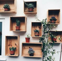 30 Stunning Ways To Wall Display House Plants With Cactus Wooden Wall Decor, Wooden Walls, Deco Restaurant, Crate Shelves, Box Shelves, Cacti And Succulents, Houseplants, Indoor Plants, Planting Flowers
